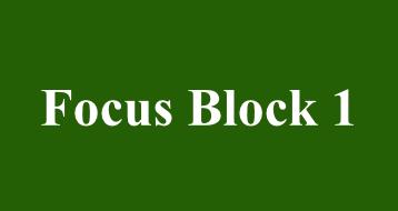 Focus Block 1